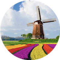 Cours de Néerlandais chez VICTORIA'S English