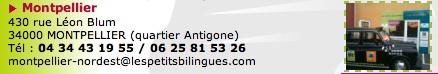 Petits_Billingues_Montpellier_2.jpg